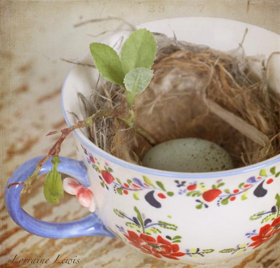 Tea Cup-3