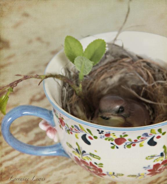 Tea Cup-4